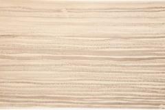 S_5-Tusche-auf-Papier-24-x-40-cm-2014